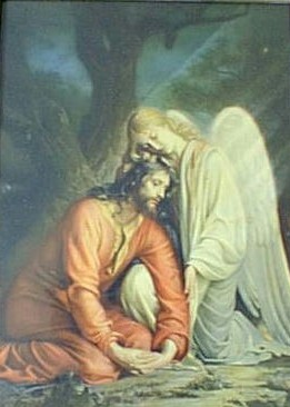 Comforted by an Angel